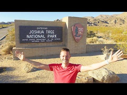 Joshua Tree National Park von Yucca, Kakteen und Wüste | GlobalTraveler.TV