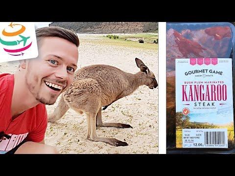 Wie schmeckt Känguru? Kangaroo Fleisch zubereiten in Australien braten grillen | GlobalTraveler.TV
