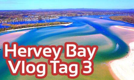 Kein Whale Watching in Hervey Bay Queensland