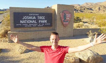 Joshua Tree National Park von Jucca, Kakteen & Wüste