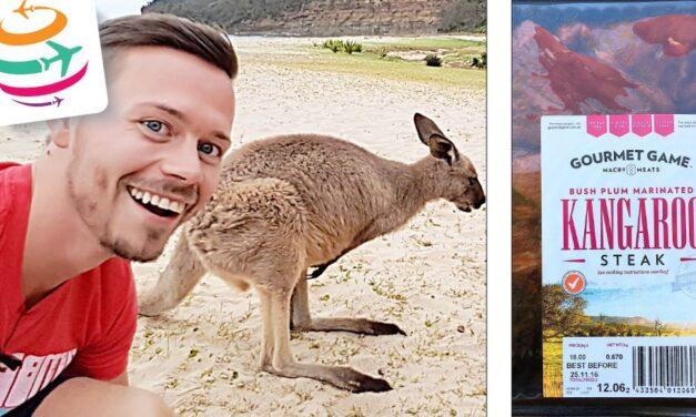 Wie schmeckt Känguru? Kangaroo Fleisch zubereiten in Australien